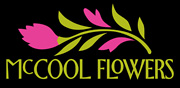 McCool_Logo_6in
